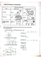 29 Student Worksheet For Microslide Lesson Set 59 ...