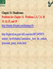 Cai_Chapter 11.ppt