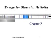 Ch 7 - Energy For Muscular Activity