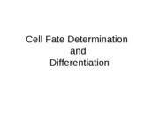 11-Determination_and_Differentiation