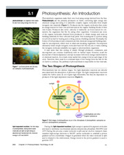 5.1 Photosynthesis Intro