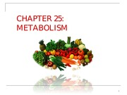 HW_A&P 2640_lecture_ch25-