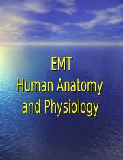 EMT Anatomy & Phyiology.ppt
