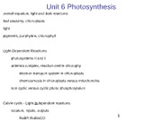 B130_06_Photosynthesis__repost