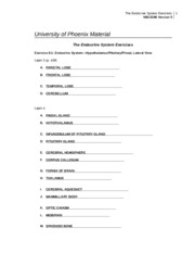 WK 7_NSCI280_workbook_the_endocrine_system_exercies