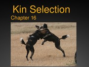 EXAM 2: Lecture 16- Kin Selection for distribution