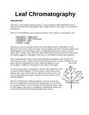 Leaf Chromatography (student) - Leaf Chromatography ...