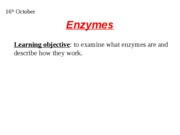 enzymes what are they