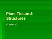 Plant Tissue and Structures and Hormones Su10