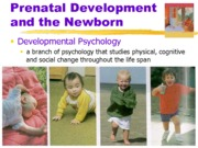 4. Development ppt