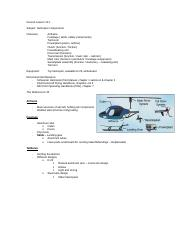 GL 10.1 Helicopter components.doc