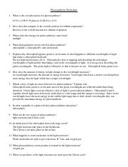 photosynthesis_worksheet_an.doc