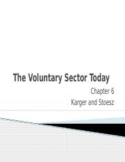The Voluntary Sector Today(1).pptx