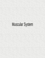 Muscular+System.ppt