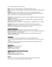 Anthropology Study Guide exam 4 .docx
