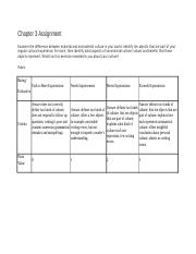 Chapter 3 Assignment-guideklines.docx
