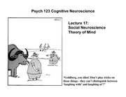 lecture17 Social neuroscience Theory of Mind