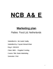 17647301-Marketing-Plan