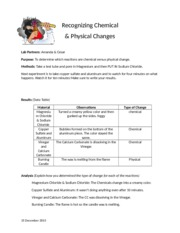 physical and chemical change  - Cesar and Amanda