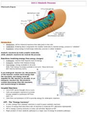 cheat sheet exam 3 bio - Energy-capacity to perform work . Kinetic ...