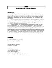 Digestive System Worksheet Lewis Dot Structure And Molecular Shape  Chapter  Lewis  Who Rules Worksheet Excel with Chemical Kinetics Worksheet Pdf Most Popular Documents For Che Reading Triple Beam Balance Practice Worksheet Word