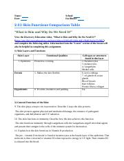 02_01_Task1_SkinFunctionsComparison.docx