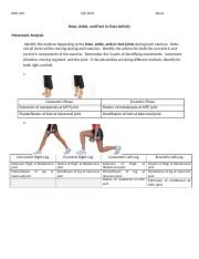 Knee_Ankle_Foot Worksheet