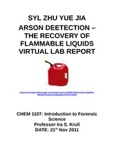 Syl Forensic arson detection