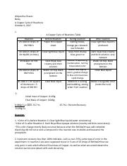 Copper cyle rections Lab 4.pdf