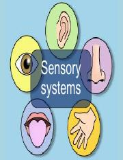Review 1 - Sensory systems (2).pdf