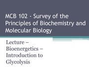 Lecture 1 - Bioenergetics and Introduction to Glycolysis - Su15