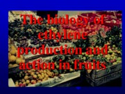 Biology of ethlene production and action in fruits - Copy