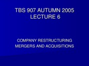 TBS 907- Autumn 2005- Corporate Restructuring- Lecture 6