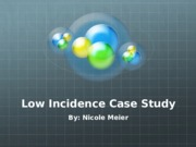 Low Incidence Case Study
