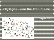 Chapter 26 - Phylogeny and the Tree of Life
