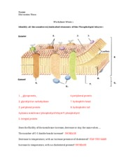 cell bio homework 3 Topic 1: cell biology 11 introduction to cells 12 ultrastructure of cells 13  membrane structure 14 membrane transport 15 the origin of cells.