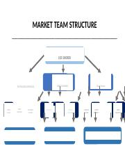 MARKET STRUCTURE AND CONTACT INFORMATION.docx