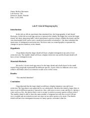 Lab Report Template and Rubric   (1) (1).docx