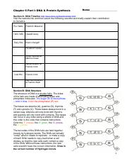 Chapter 6 Student Worksheet I DNA & Protein Synthesis.pdf