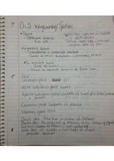 intergumentry system notes