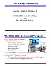 it446 data maining.pdf