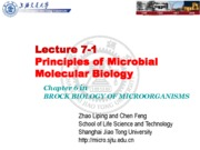 08-2 Lecture 7-1 Essentials of Molecular Biology