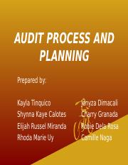 #1 audit process and planning