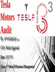 Tesla Motors Audit.pptx
