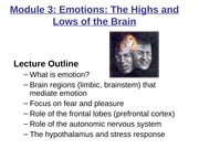 NS10 Emotions Lecture.JBW