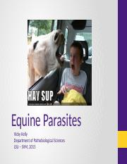 4001 Equine Lecture 2016