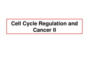Lect19-CellCycle_CancerII