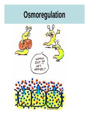 Osmoregulation (16)