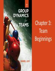 Levi_GroupDynamics5e_PPT_03