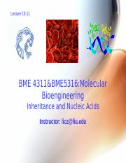5-7 BME 4311&BME5316 genetic human genome DNA